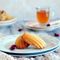 Raspberry and Rose Madeleine