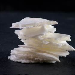 Dehydrated milk foam