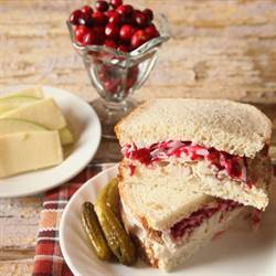 Turkey With Cranberry Raspberry