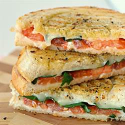 Margherita sandwich recipe (1)
