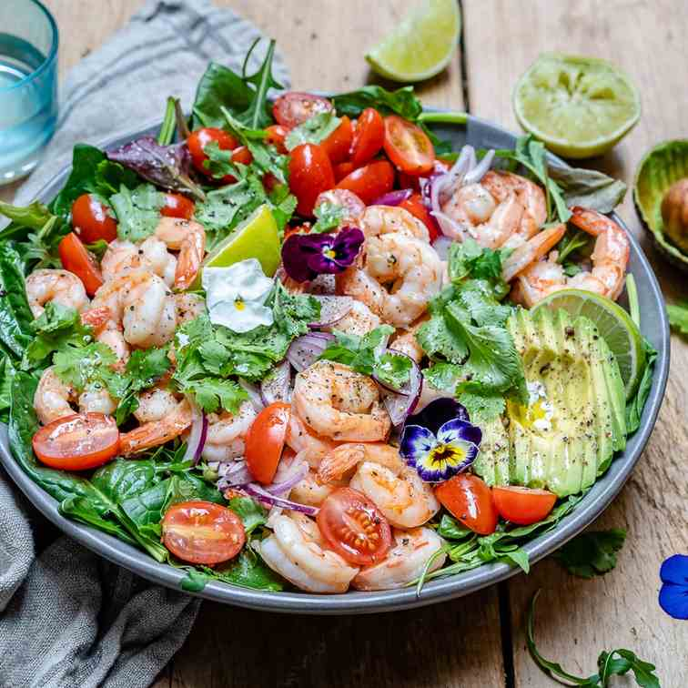 Cilantro Lime Shrimp And Avocado Salad