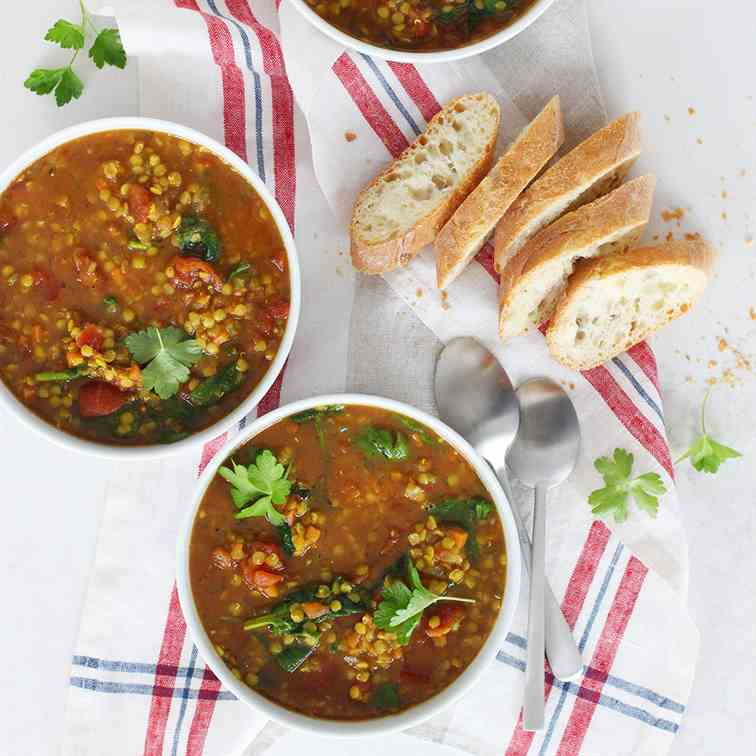 Wholesome Spiced Lentil Tomato Soup
