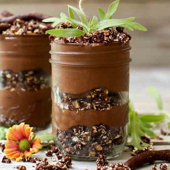 Chia Pudding Dirt Cups