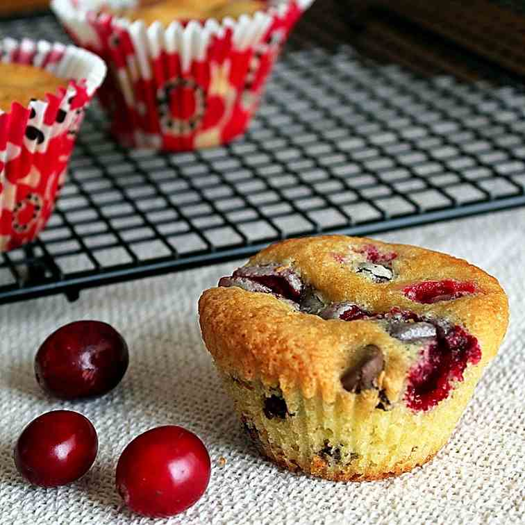 Cranberry Chocolate Chip Cupcakes