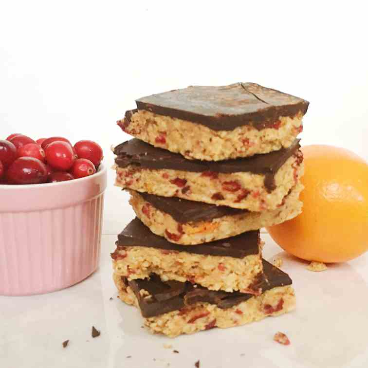 No Bake Chocolate Covered Orange Cranberry