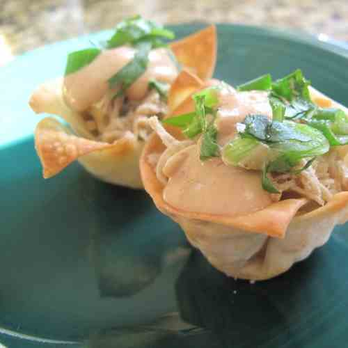 Pulled Pork Wonton Cups