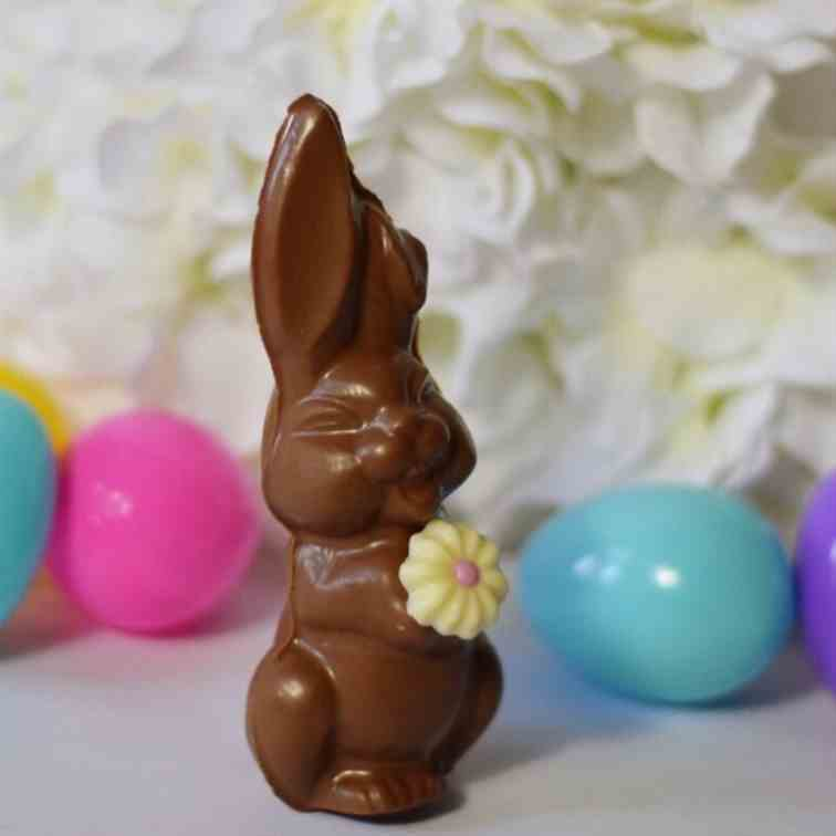 Hollow Chocolate Easter Bunny