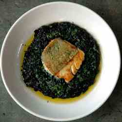 Bacalao on Black Risotto