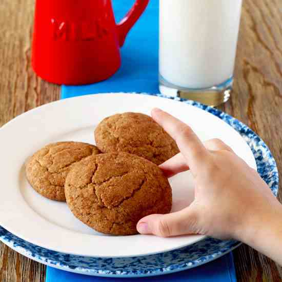Old Fashioned Snickerdoodles