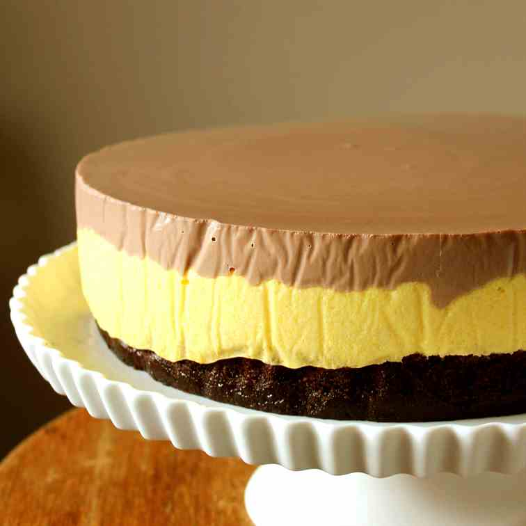 Chocolate Cake with Mango Mousse