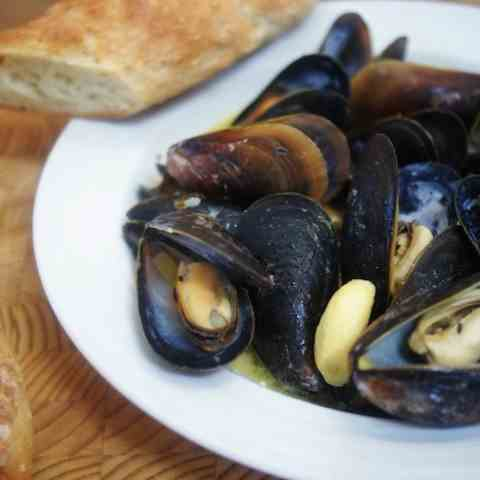 Mussels with Saffron & Mustard