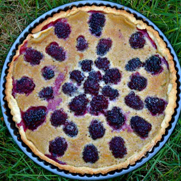 Fresh Blackberry Tart