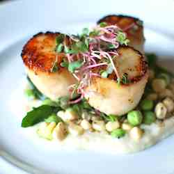 Sustainably Caught Seared Scallops
