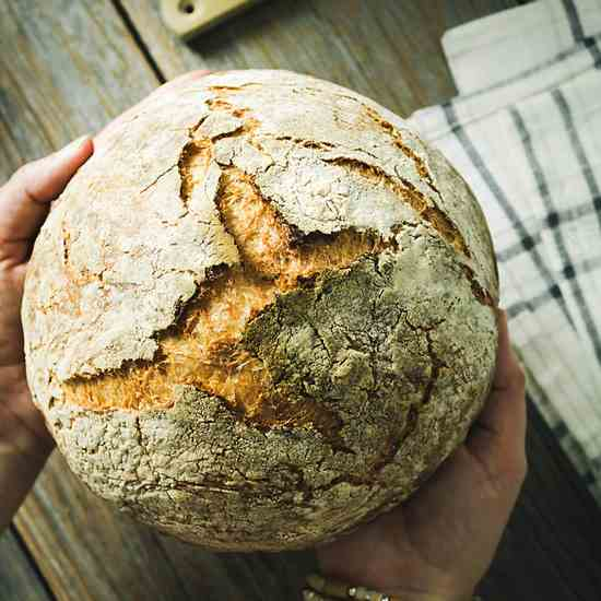 How to Make No-Knead Artisan Bread