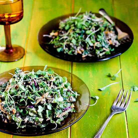 Wild Rice and Kale Salad with Spicy Pesto