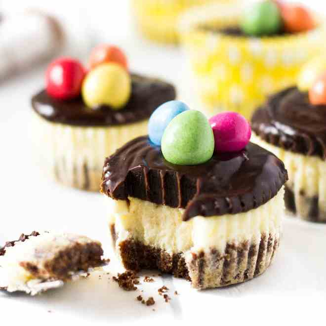 Mini Chocolate Easter Cheesecakes